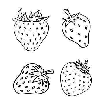 Handdrawn strawberry set doodle icon. Hand drawn black sketch. Sign cartoon symbol. Decoration element. White background. Isolated. Flat design. Vector illustration