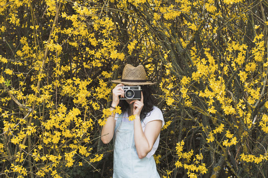 Young woman photographing with vintage camera while standing amidst yellow blossoms on branches at park