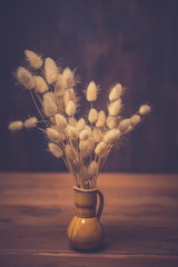 bunny tails grass on wooden background.