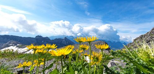 Sehnsuchtsort, Ausblick zum Träumen vom Säntis auf die umgebenden Gebirge: Schweiz, Seilbahn, Berge, Gebirge, Schwägalp – Switzerland :)