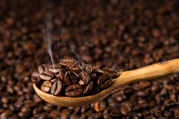 Roasted coffee beans in a wooden spoon, closeup