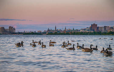 Ottawa in sunset from the Bates Island