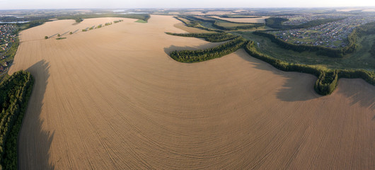 A rich harvest of wheat. Belgorod region.