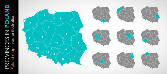Wektorowa mapa województw w Polsce - KOLOR