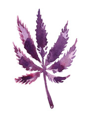 Single bright purple hemp leaf painted in watercolor on clean white background