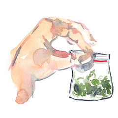 Hand holding small plastic bag with hemp painted in watercolor on clean white background
