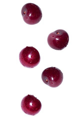 Ripe cherry berries fall on a white isolated background.