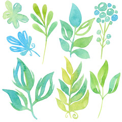 Set with painted stylized green leaves isolated on white background. Watercolor illustration