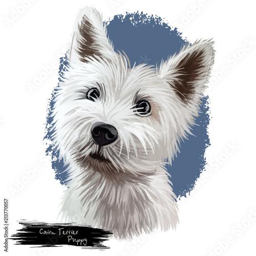 Cairn terrier puppy portrait digital art illustration