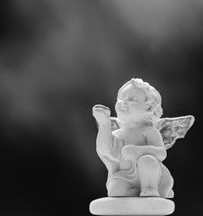 Baby Angel On Black And Misty Background 2