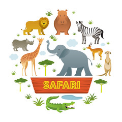 Group of African Safari Animals