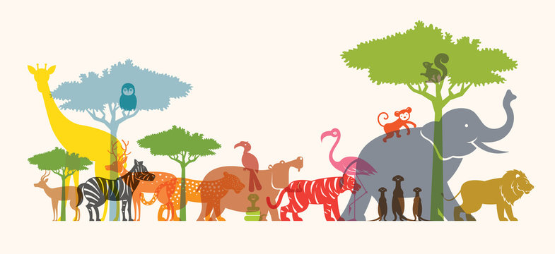 Group of Wild Animals, Zoo, Silhouette, Colourful Shape