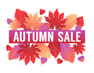 Colorful autumn vector design with fall season leaves isolated on white background. For sale advertisement banner, wallpaper, background, backdrop