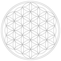 Geometrical figure. Sacred Geometry Flower of Life vector illustration