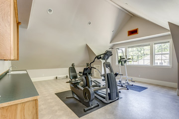 Well appointed home gym with vaulted ceiling