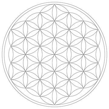 Geometrical figure. Sacred Geometry Flower of Life vector illustration