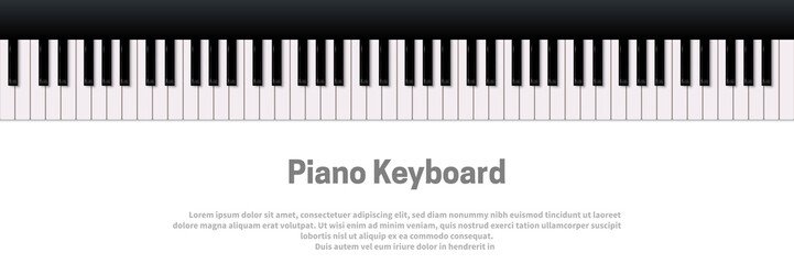 Piano keyboard isolated on white background. Vector music design template.