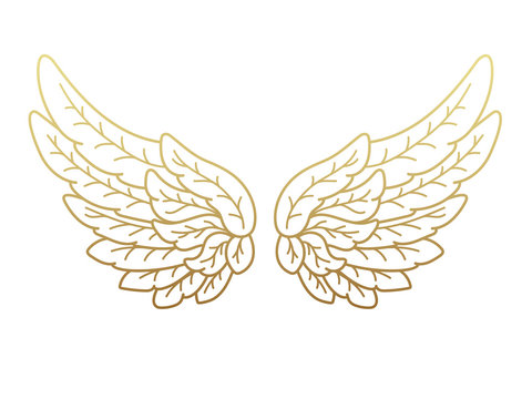 A pair of angel wings, wide open with golden metallic effect. Contour drawing in modern flat line style. Vector illustration