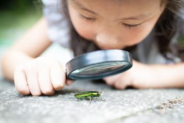 タマムシを虫眼鏡で見る女の子