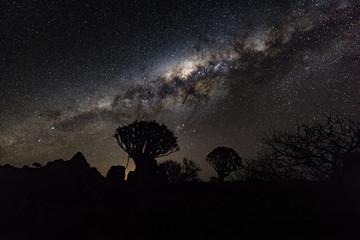 Köcherbaumwald, Namibia