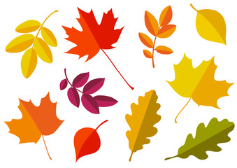 Vector set of decorative autumn leaf silhouettes.
