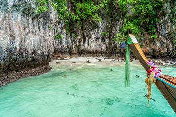 Monkeys on Beautiful Bay Tropical Beach blue ocean background