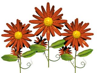 Blumen mit bunten Blüten