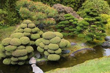 Golden Gate Japanese garden