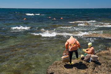 海食台の岩場から海へ泳ぎ出る海女