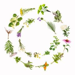 Heilpflanzen, Kreise, Rahmen