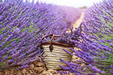 Baskets with lavender in the field
