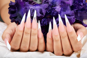 Hands with long artificial french manicured nails and a purple Iris flower Wall mural