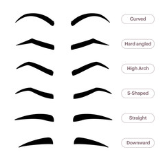 Eyebrow shapes. Various types of eyebrows. Classic type and other. Trimming. illustration with different thickness of brows. Makeup tips.