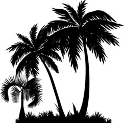 Palmen Silhouette Dekor
