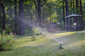 Garden lawn watering system