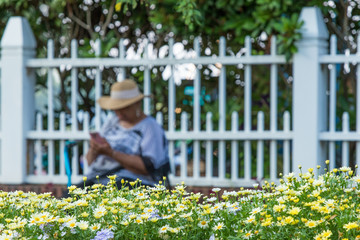 A woman browsing a cellphone as a foreground of beautiful garden flowers