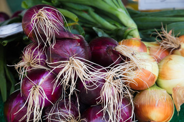 Red and yellow onions for sale in farmers market