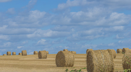 Several straw rolls on a field and blue sky with clouds