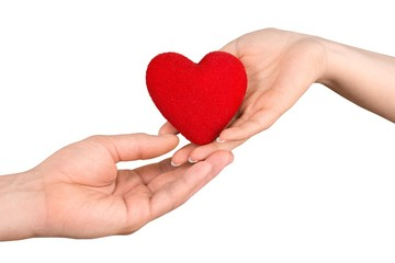 Female and Male Hands Holding a Heart