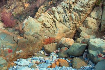 Текстура  скальной породы.Красочные узоры на прибрежных камнях
