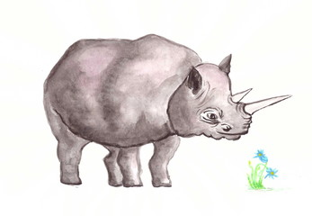 Drawing with watercolors: a large gray rhinoceros.