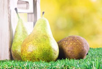 seasonal fruit, pear