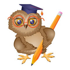 Owl bird student with pencil, stands. Isolated drawing, icon. Character cartoon. Vector illustration.