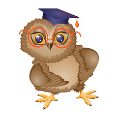 Owl bird student  , stands. Isolated drawing, icon. Character cartoon. Vector illustration.