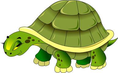 sad turtle