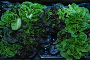 verdura  e frutta di stagione al mercato