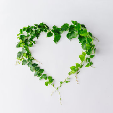 Creative layout made of branches and leaves with copy space. Flat lay. heart shape. Love concept