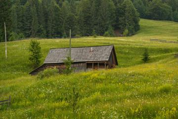Romanian hillside and village in summer time , mountain landscape of Transylvania in Romania