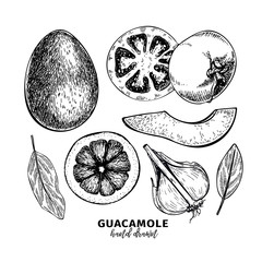 Hand drawn avocado, tomato and garlic. Guacamole dip ingredients. Vector engraved cooking icons. Mexican traditional food. Use for restaurant menu design, packaging, kitchen book illustration, flyer.