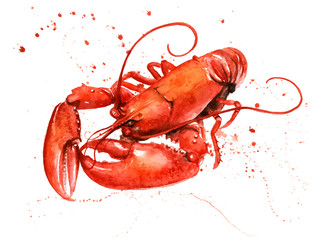 Lobster Watercolour